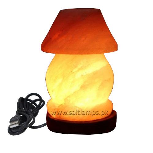 Table Lamp-Shape-Salt-Lamp