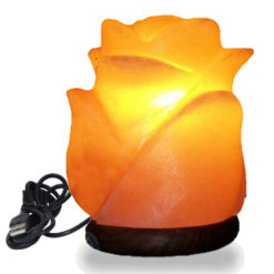 USB-Flower-Salt-Lamp